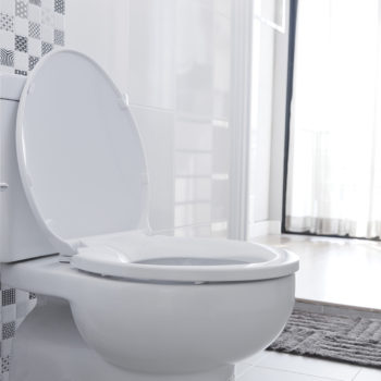 4 Ways To Unclog Your Toilet Roman Electric